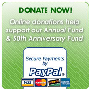 Donate_Now_Paypal